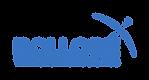 Logo_Bolloré_Transport_Logistics.png