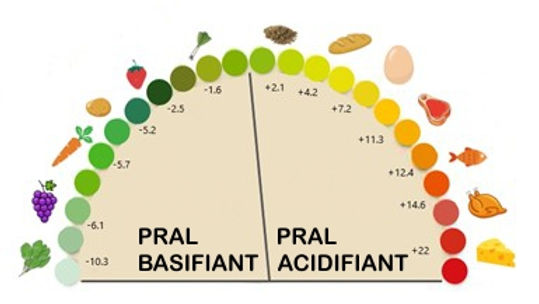 Tableau acidobasique PRAL.jpg