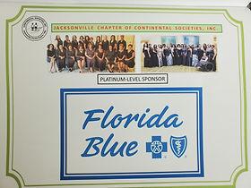 CSI Florida Blue.jpg