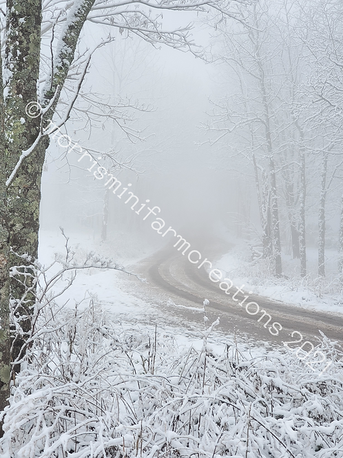 Snowy, Foggy Dirt Road