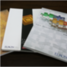 Elron-Annual Report