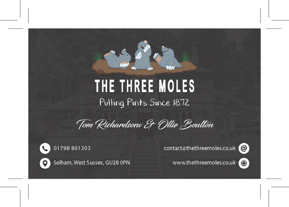 Three Moles Business Card Front