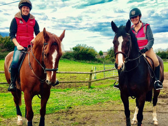 Hacking - why it's important for your horses health