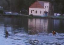 Diving Mirror Pond 2 (1979)