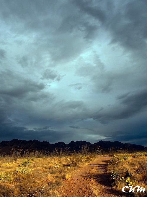 Desert Contrast Photo Print