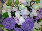 Свойства цветов и самоцветов ЦВЕТОЧНОГО ОБЕРЕГА