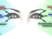 «Глазодвигательное» избавление от проблемных состояний