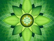 3. Программа исцеления Центра Сознания ХАРА