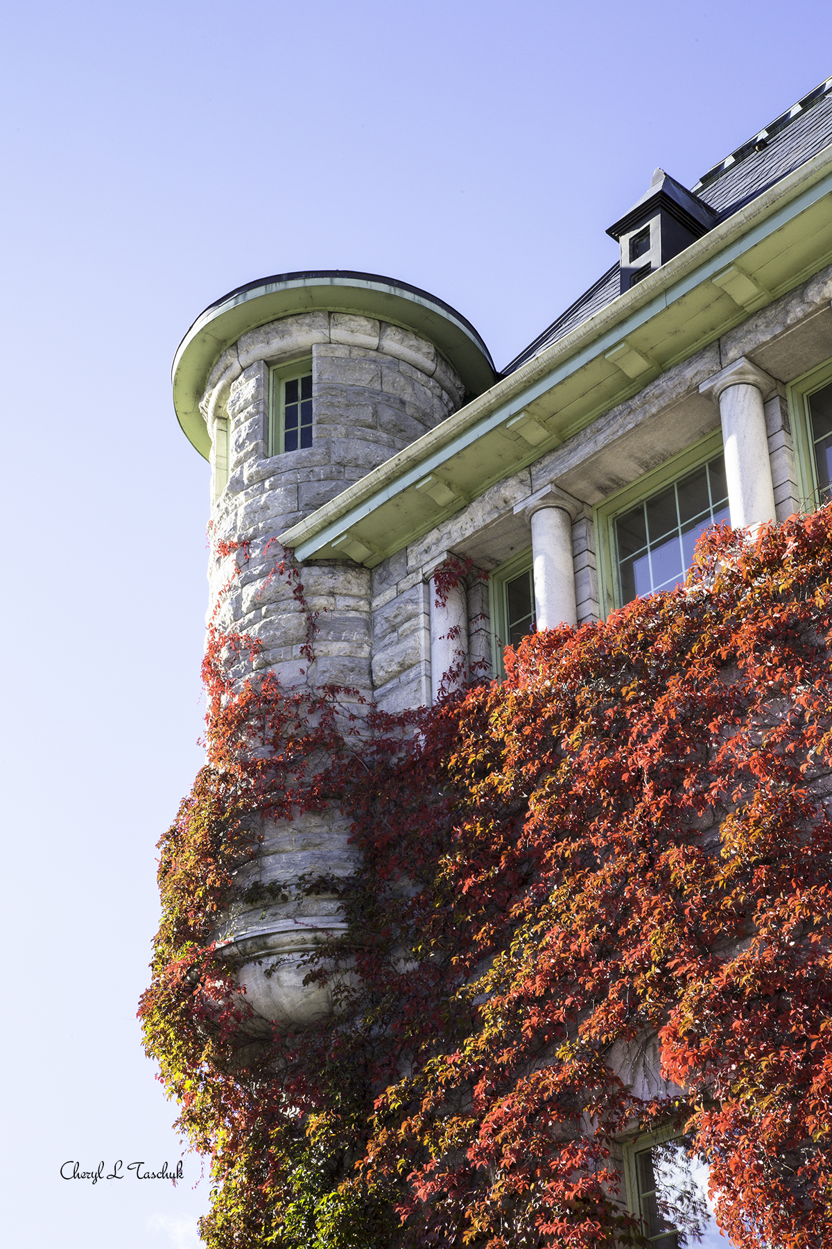 Nelson Courthouse Tower (Rattenbury)
