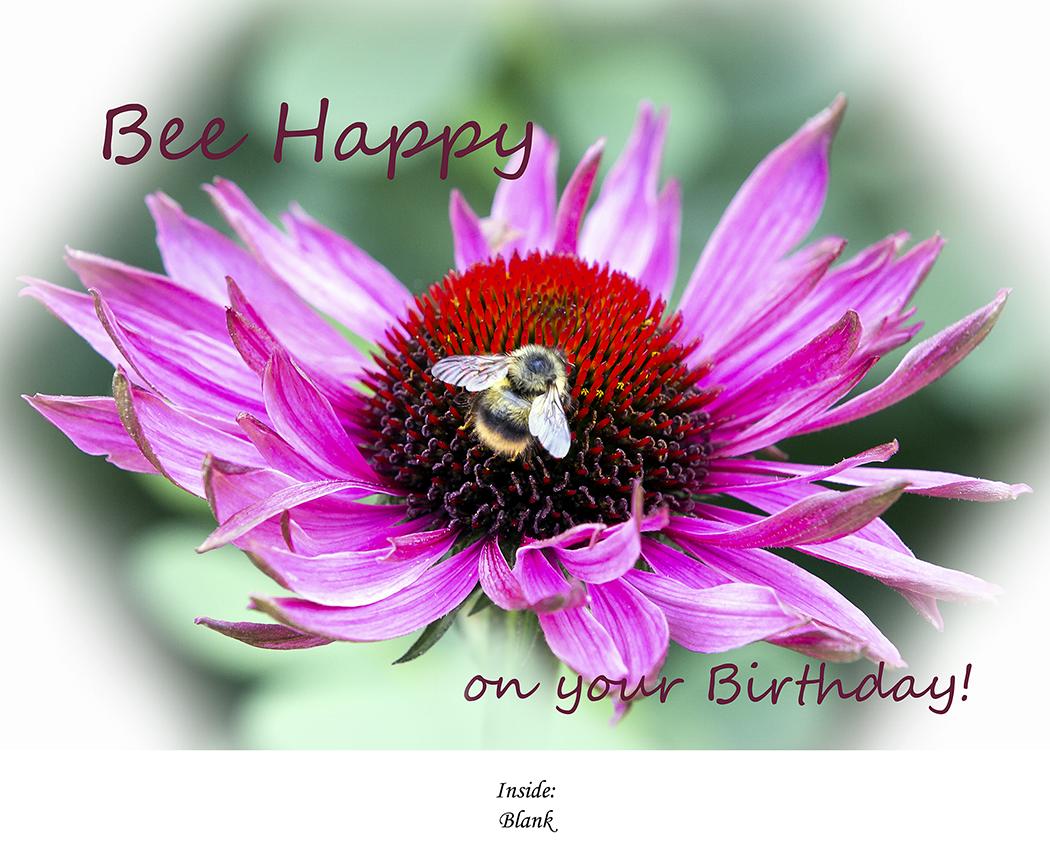 Bee Happy on your Birthday