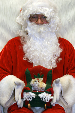 Christmas Fund Raiser-Hamsters