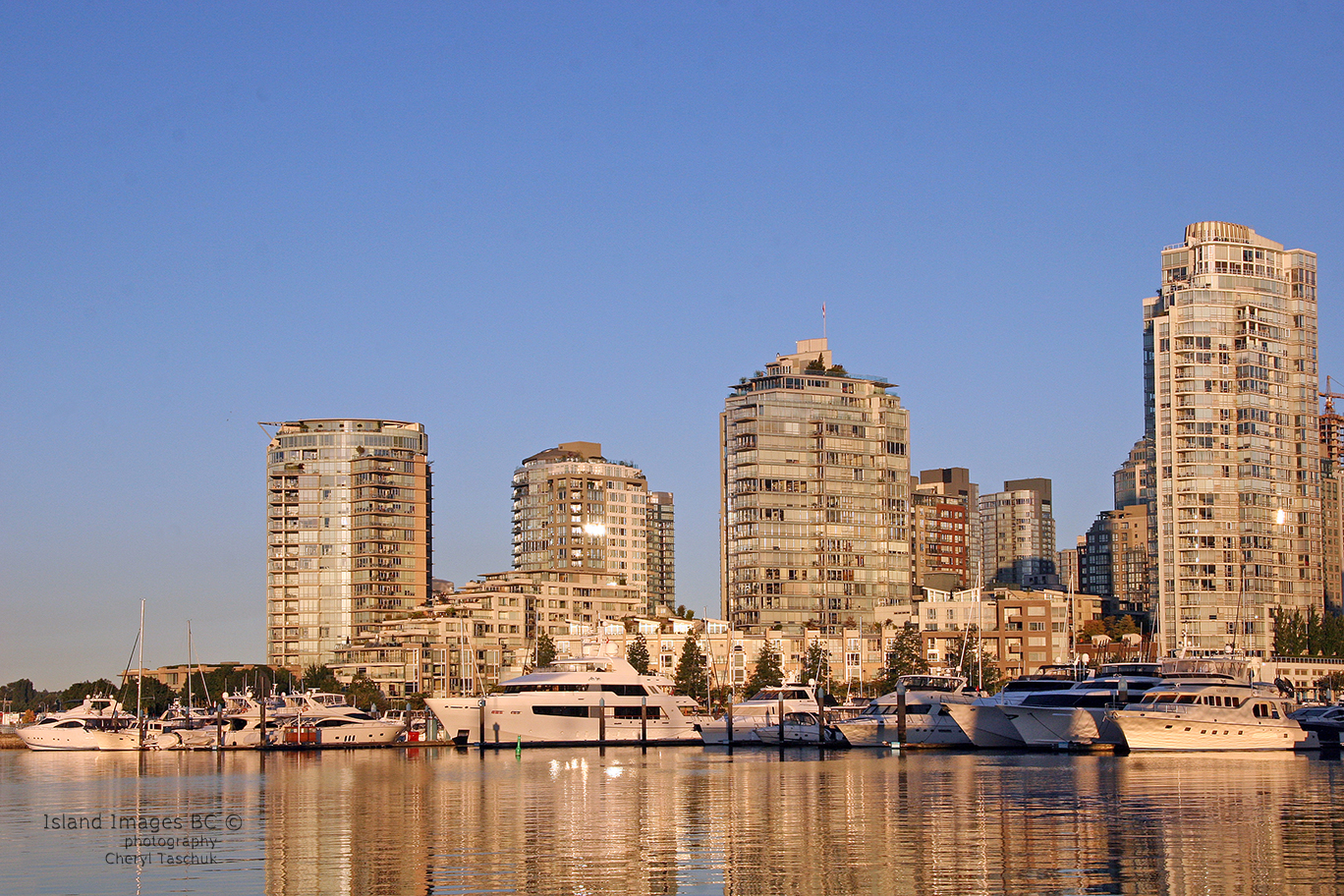False Creek Skyline