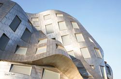 Las Vegas Gehry Building