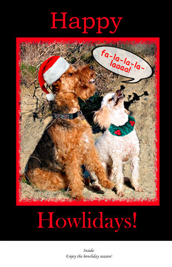 Greeting Card-K9 Carollers