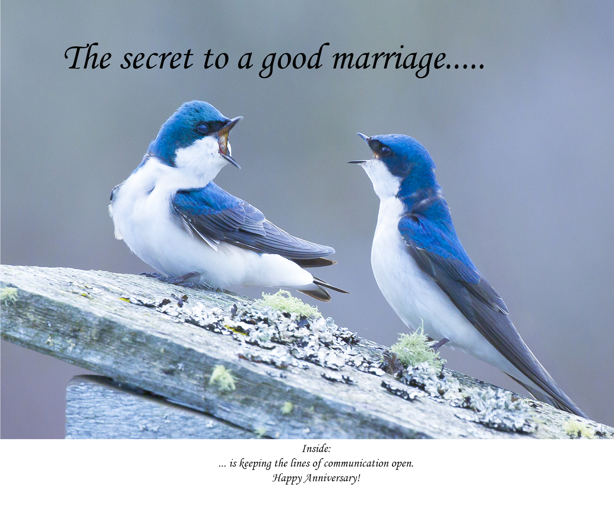 The secret to a good marriage...
