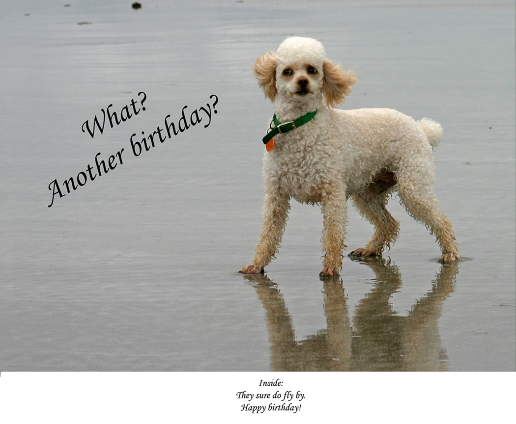 What? Another birthday?