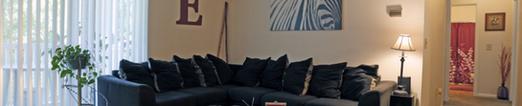 Sycamore Run Apartments Living Room Photo