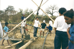 Los Manguitos 2001