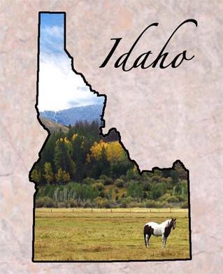 Idaho Environmental Health Association's Conference