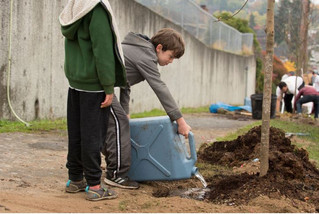 Workshop: What are the connections between stormwater, health and equity?