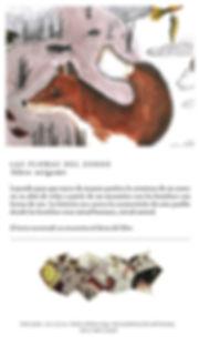 4-zorro_catalogo historias.jpg