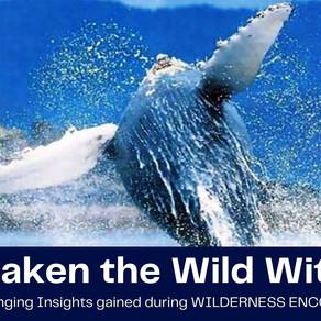 Why Awaken the Wild Within
