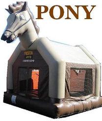pony.jpeg