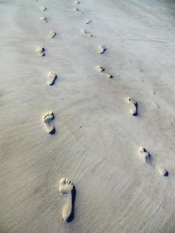 DSCN9716.jpg  1st footprints ..