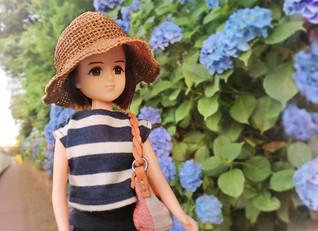 紫陽花の名所飛鳥山公園