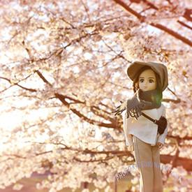 2107年の桜