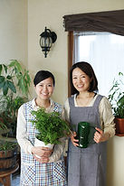 Companion Home Health Services