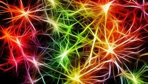 Kan vi hjälpa hjärnan att utvecklas, läka och lära?