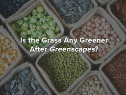 Is the Grass Any Greener After Greenscapes?