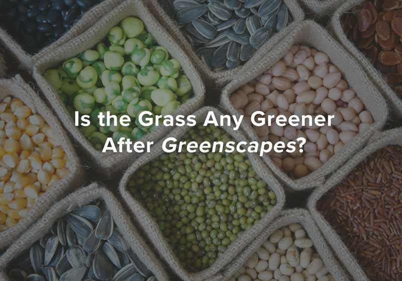 Is the Grass Any Greener After Greenscapes