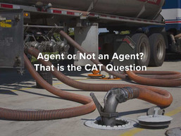 Agent or Not an Agent? That is the CAT Question