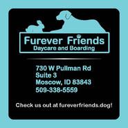 Furever Friends Business Card Redesign