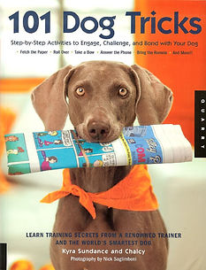 Deer Creek Labradoodles recommended products