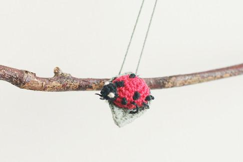 A Tree Branch & A Ladybug / 2014