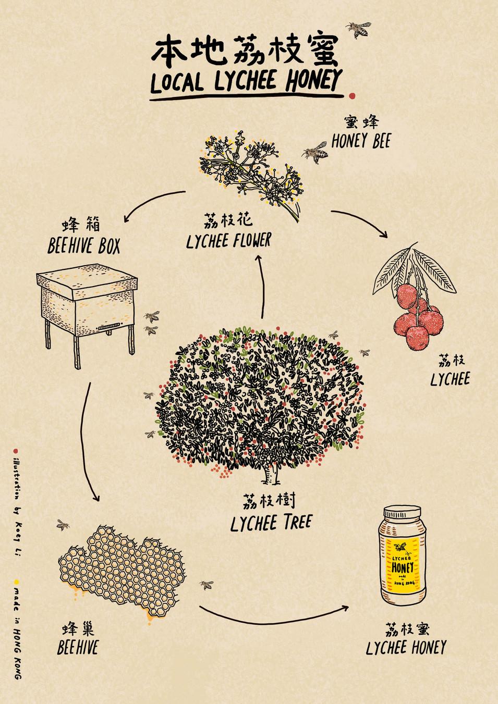 Hong Kong Lychee Honey / 2015