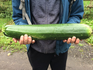 The courgette that got away