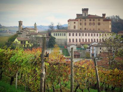 Barolo-town-view-lo_edited.jpg