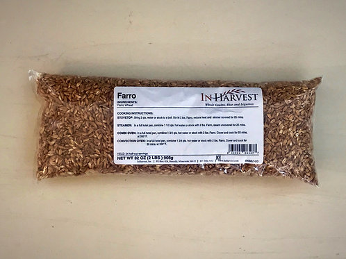 Farro Wheat Grain - In Harvest