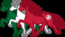 IIPV-Logo-web.png