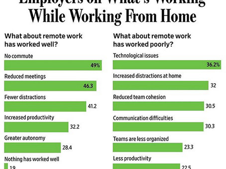 Employers on What's Working While Working From Home