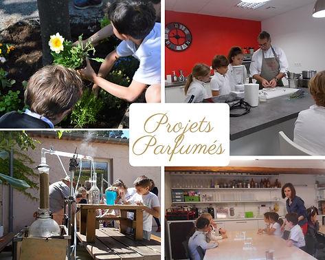 projets_parfumés_1.jpg