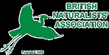 BNA Logo_edited.png