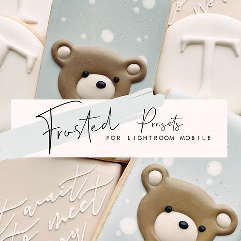 Frosted Presets