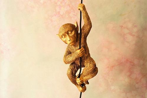 Entzückend! Geniale Lampe mit Affenbaby