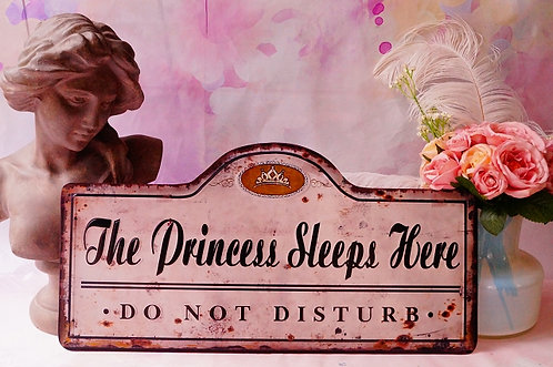 50 cm BREITE!!! The Princess sleeps here! GENIALES Schild im Vintage-Stil
