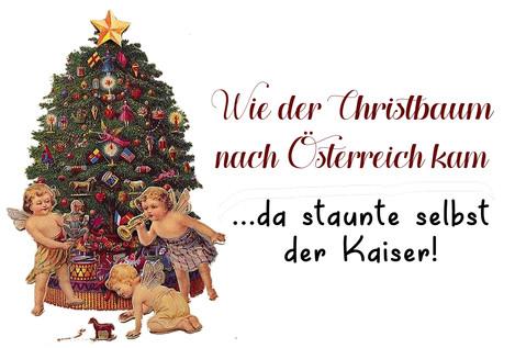 Österreichs erster Christbaum